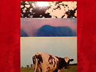 "Pink Floyd 3 Orig.Vinyl-LPs""Meddle/Atom Heart Mother/Obscured by Clouds""1970sUSA, thumbnail_release243_301854988250.jpg"